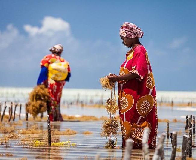 Reisen Sansibar